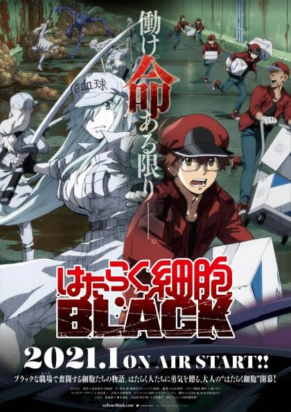 Cells at Work! BLACK ซับไทย EP1-EP12