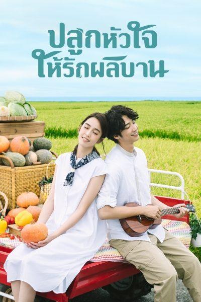 ปลูกหัวใจให้รักผลิบาน My Goddess พากย์ไทย EP1-EP24 [จบ]
