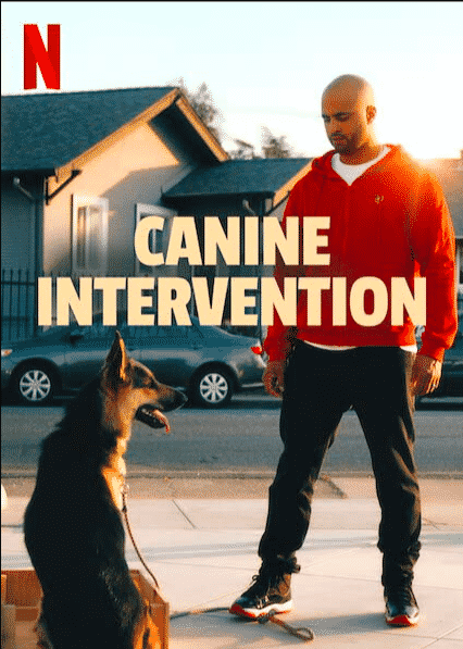 CALI K9 สุนัขบำบัด ซับไทย EP1-EP6 [จบ]
